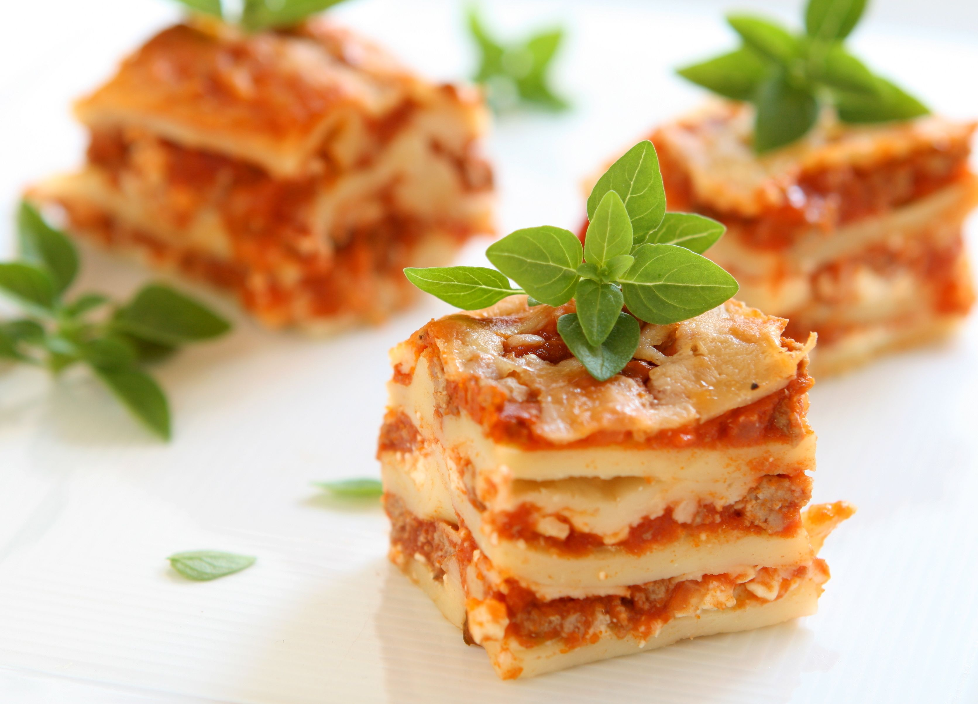 Old fashioned italian lasagna recipe 39